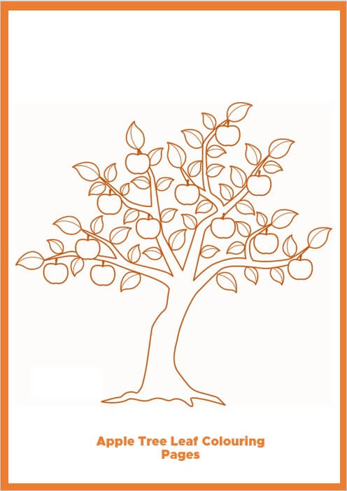 Apple Tree Leaf Colouring Pages
