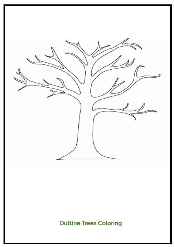 Outline Trees Coloring