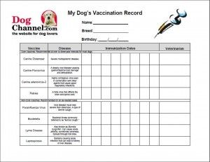 picture relating to Dog Vaccination Record Printable Pdf known as Canine Vaccination History Printable place