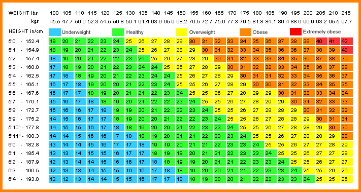 picture relating to Printable Bmi Chart referred to as Printable Bmi Chart house