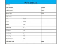 printable profit and loss statement profit and loss 29