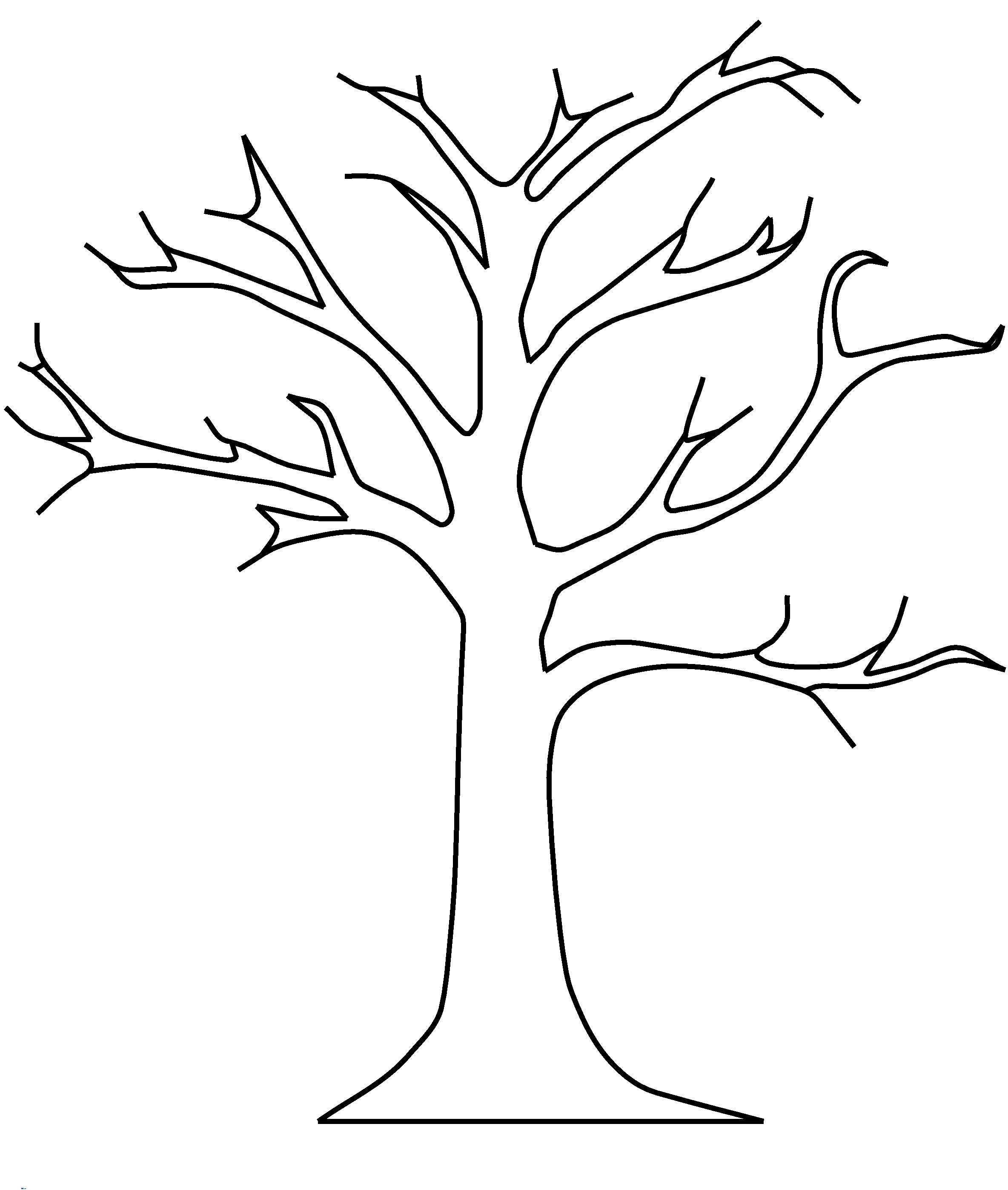 photo about Tree Template Printable known as Printable Tree Templates space