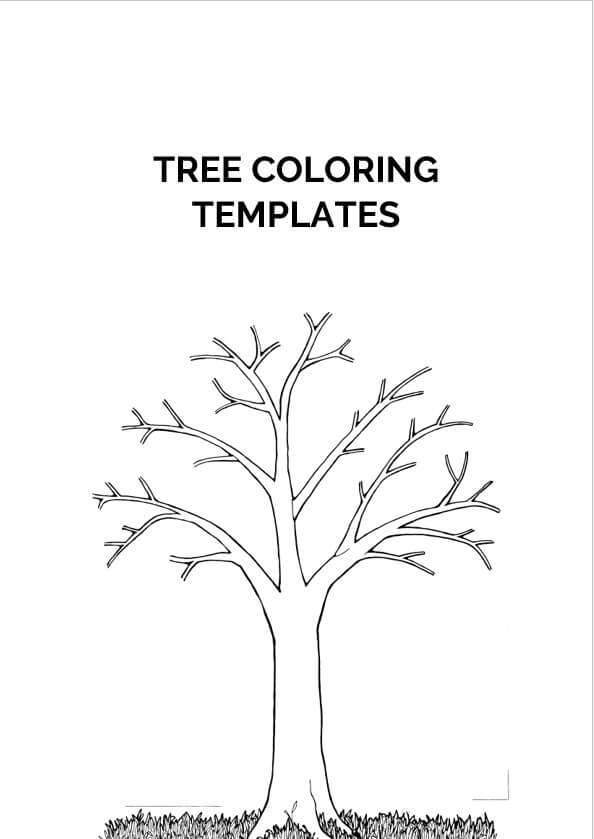 Tree Coloring Templates