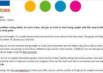 Sample weight loss packet plan 1