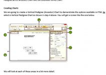 Templates Step by step guide family tree charts Sample