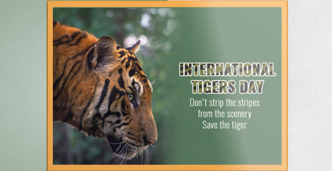 Tiger Day Greeting Card Design Template